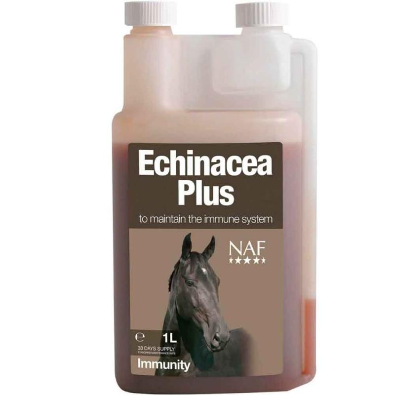Echinacea - Solhatt NAF