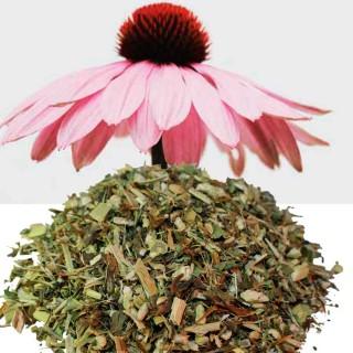 Echinacea - Solhatt Urt