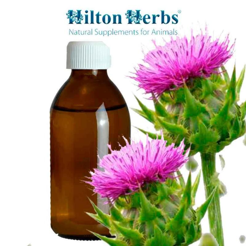 MARIATISTEL tinktur Hilton Herbs