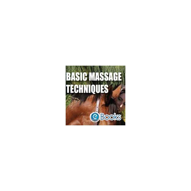 Basic Massage techniques DVD