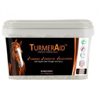 Tumeric Aid gurkemeie