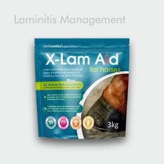 GWF X-lam aid
