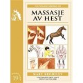 Hefte massasje av hest